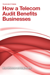 How a Telecom Audit Benefits Businesses